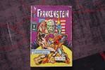 Comics Frankenstein N°13  1979 - Frankenstein