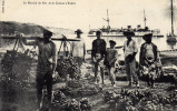 TAHITI - Le Marché De Feïs Et Le Catinat à Tahiti - Tahiti