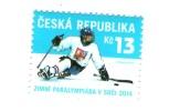 Czech Republic  2014 - Winter Olympic Games In Sochi, Ice Sledge Hockey, 1 Stamp, MNH - Winter 2014: Sotchi