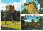 Blarney Castle: Situated 5 Miles From Cork City  Blarney Stone - Cork