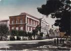 BARI - Molfetta - Seminario Vescovile - 1956 (DIFETTO MA CARTOLINA NON COMUNE) - Molfetta