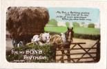 For My Son's Birthday - W & K, Draught Horses, Farm Scene Vintage Card - Birthday