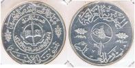 ARABE A IDENTIFICAR PLATA SILVER S - Monedas