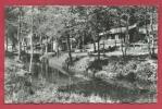 Virton - La Mère-Dieu Et Le Repaire Des Zigomars - 1962 ( Voir Verso ) - Virton