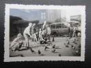 PHOTO (M1530) PERSONNES DONNANT A MANGER AUX PIGEONS (2 Vues) Bus Colonia à L'arrière - Photos