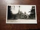Carte Postale Ancienne : SAINT-OURS LES ROCHES : Le Chateau Des Roches, Fontaine, En 1953 - Frankreich