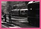 Photo - Train - Gare - Bahnhof Filisur - Locomotive - Suisse - Animée - Agent - SEYFERTH - 1984 - Stations With Trains