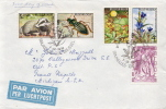Postal History Cover: Belgium Animals, Flowers Set On Cover - Stamps