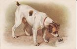 Illustrateur , Chien, Escargot, 2 Scans - Cani