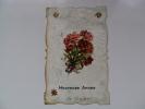 HEUREUSE ANNEE THULIN  -  Env.1907 - Hensies
