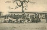 DIRE DAOUA MARCHE AU BETAIL - Ethiopie