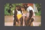 ANIMALS - ANIMAUX - SINGES - KISSING COUSINS AT MIAMI'S MONKEY JUNGLE FLORIDA - Singes