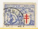 BELGIUM  B 161   (o)   ANTI - TUBERCULOSIS - Used Stamps