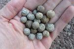 WATERLOO 1815 . Balles De Pistolet En Plomb - Archéologie