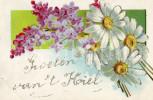 Postkaart / Post Card / Flowers / Bloemen / Fleurs / Groeten Van ´t Koiel (?) / Hoicl (?) / Hoiel (?) / 1906 - Souvenir De...
