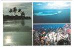 Maldiven - Maldives - Views Underwater -  Nice Stamp - Maldiven