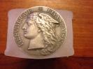 Médaille De Bonneville 1899 (haute Savoie )argent - Francia
