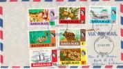 Postal History Cover: Bahamas Turtle, Fruit, Ship, Plane, Fish Stamps On Cover - Bahamas (1973-...)