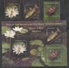 ROMANIA ,2008, MNH, MAIRNE LIFE, FLORA, FISH, SHELLS, FLOWERS, 3v+SLT - Fishes