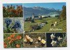SWITZERLAND - AK 245665 Wildhaus - SG St. Gall