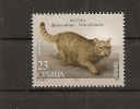 Serbia 2014,FAUNA ,WILD CAT,,WILD ANIMALS,MNH - Serbia