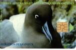 Telecarte TAAF 50U Neuve Albatros Fuligineux - TAAF - French Southern And Antarctic Lands