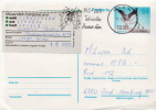Postal History Cover: Austria Stork Postal Stationery Card - Storks & Long-legged Wading Birds
