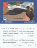 U.A.E.(chip) - Flag & Falcon, E-Dirham Telecard 500 Units, 07/01, Used - Ver. Arab. Emirate