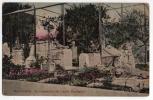 URUGUAY MONTEVIDEO ZOO  Animal Cementery Graveyard Villa Dolores  Vintage Original Ca1900 Postcard Cpa Ak (W4_1575) - Uruguay