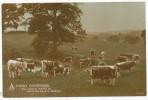 A Family Gathering, 1913 Postcard - Farms