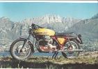 PCT/69 MOTO GUZZI V7 Sport 750 Cc. Anni ´60  Cm. 32 X 20 - Motor Bikes