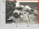 CARTOLINA VG ITALIA - CAVI DI LAVAGNA (GE) - Sinfonia Marina - 10 X 15 - ANNULLO 1953 - Italia