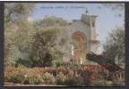 Jerusalem - Garden Of Gethsemane -See The 2  Scans For Condition( Originalscan ! ) - Palestine
