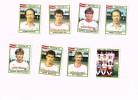 Figurine Panini 1984 /SV Zulte Waregem/Football/Fußball X 8 !!! - Football
