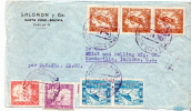 Postal History Cover: Bolivia Panther, Toucan, Lamas, Egrets Stamps On Cover - Stamps