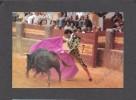 CORRIDA - BULL FIGHT - REAL MAESTRANZA DE CABALLERIA DE RONDA - PACO OJEDA EN LA CORRIDA GOYESCA DE RONDA - Corrida