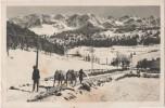 Carte Postale - LE VILLARD DE LANS - Attelage Rustique Sur La Route Des Clots Vue Sur Les Montagnes De Lans - Villard-de-Lans