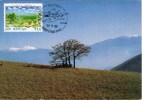 SAINT MARIN EUROPA 1995 - Lettres & Documents