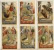 Liebig 1891 Sanguinetti  N. 325 € 55 Simboli (Italia) - Liebig