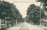13 AUBAGNE / Allée Des Marroniers / - Aubagne