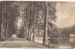 TERVUREN: Avenue De L'imperatrice Dan Le Parc De Tervuren - Tervuren