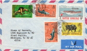 Postal History Cover: British Honduras Animals, Fishes Stamps On Cover - Stamps