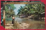 3 AK JAMAIKA ~ 1965 - Cartes Postales