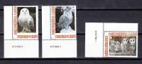 Netherlands Nederland 2013,3V,birds,owls,vogels,uilen,vögel.eulen,oiseaux,pajaros,uccelli,aves,MNH/Postfris(A1879) - Vogels