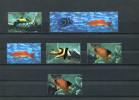 CHINA 1998 FISHES USED/CTO - Vissen