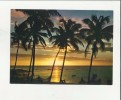 96611 MAURITIUS  MAURICE - Mauritius