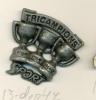 13-dep47. Pin. Sport Tricampions - Pin