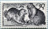N° Yvert 1037 - Timbre De Tchécoslovaquie (1959) - MNH - Parc National Des Tatras - Marmottes (JS) - Czechoslovakia