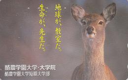 Télécarte Japon / 110-011 - Animal - BICHE - HIND Japan Phonecard - HIRSCHKUH Telefonkarte - 55 - Japon