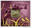 CENTRAL AFRICA 2014 ** S/S Libelles Libellen Libellules Anisopteres A1449 - Insekten